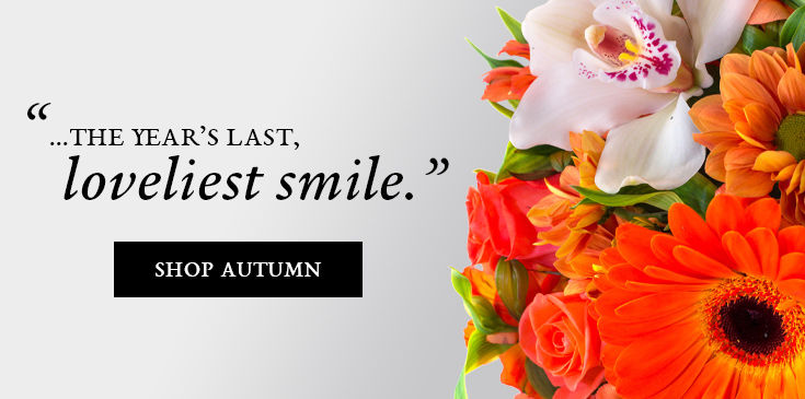 Funeral Flowers Arrangements Prospect Ct Florist Waterbury 100 0890crop Jpg